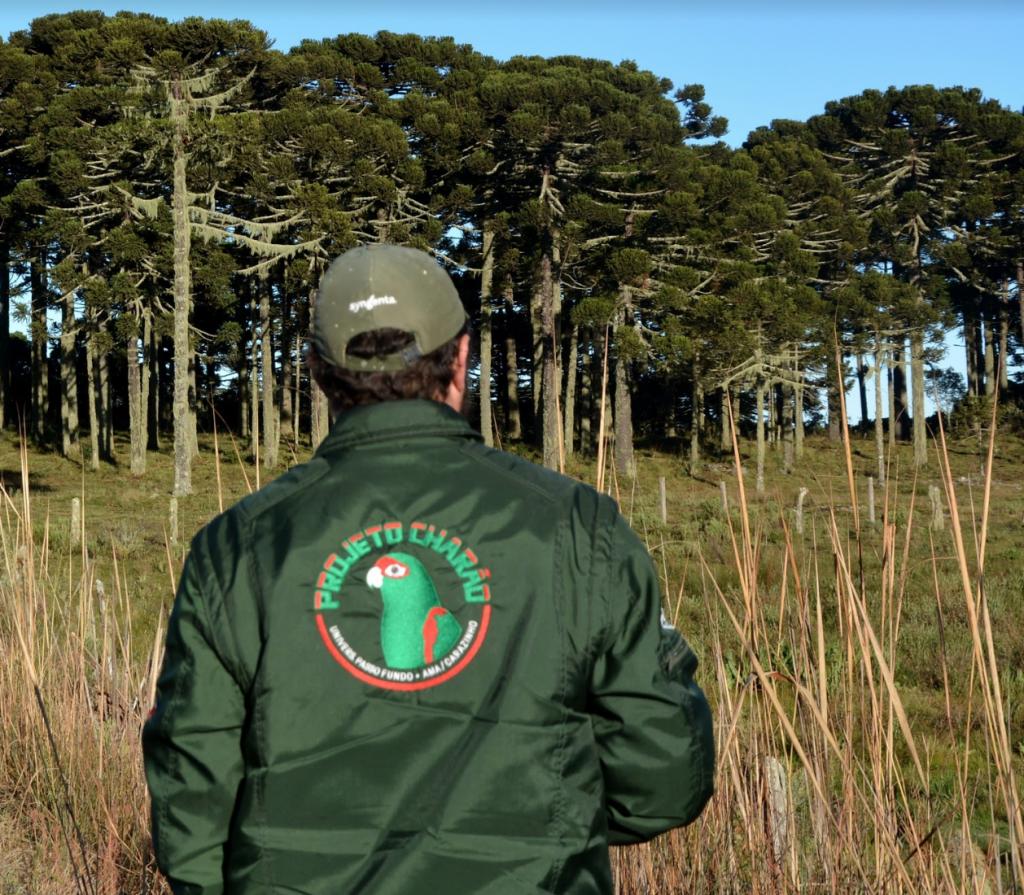 Ambientalista do projeto Charão em frente a Floresta de Araucárias.
